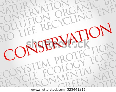 Conservation word cloud, environmental concept - stock vector