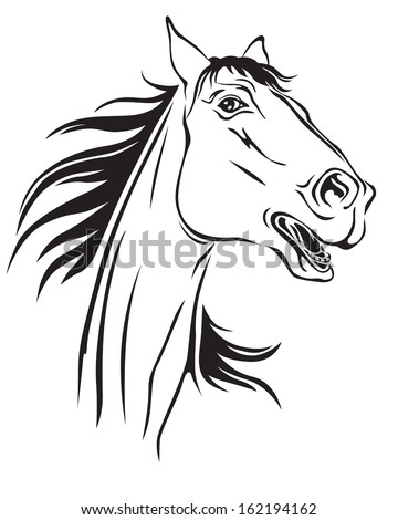 Contour image of a beautiful neighing horse