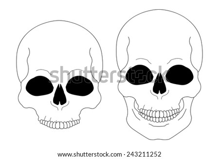 Contour lines skull vector clip art illustration isolated on white - stock vector