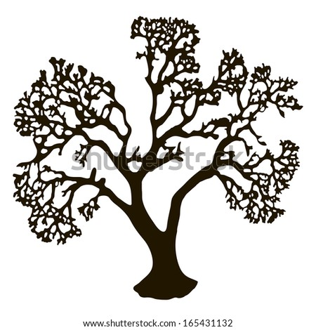 Contour tree without leaves, autumn tree. Vector illustration.