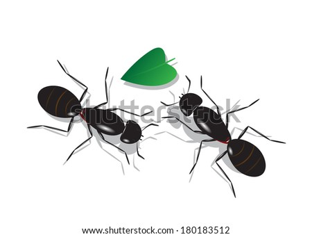 Couple of lovers of an ant and a leaf in the form of heart on a white background. - stock vector