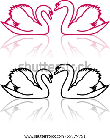 couple of swans, symbol of love in pink and black and white