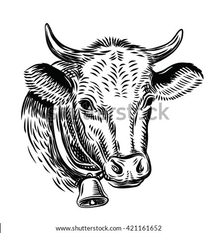 cow black head vector on white background - stock vector