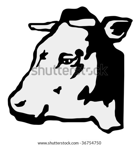 Holstein-Friesian cattle 01 | christian_jacquet | Flickr |Dairy Cow Head Profile