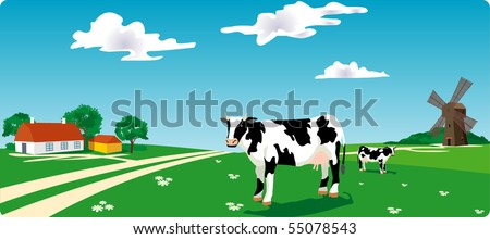 cow on grass - stock vector