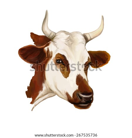 cow vector illustration  hand drawn  painted watercolor  - stock vector