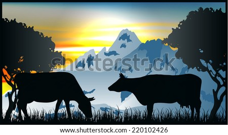 Cows graze in the mountains of the Alps - stock vector