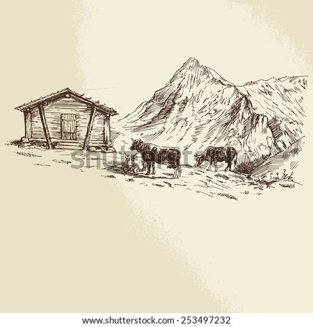 Cows in the mountains - hand drawn illustration - stock vector