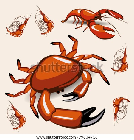 crab - stock vector