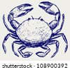 Crab sketch - stock vector