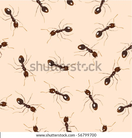 Crawling ants. Seamless pattern - stock vector