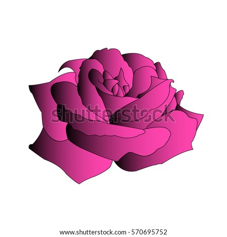 Creative violet gradient black rose with a black outline