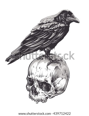 Crow on skull isolated on white. Hand drawn vector art. Sketch vector illustration.