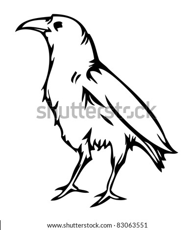 Crow raven , vector illustration - stock vector