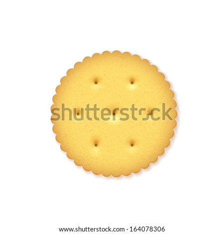 Crunchy Cracker on white background - stock vector