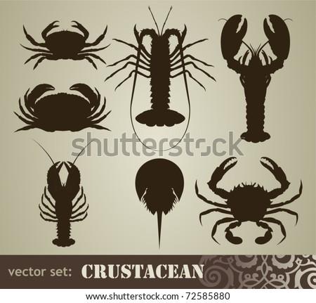 crustacean set - stock vector