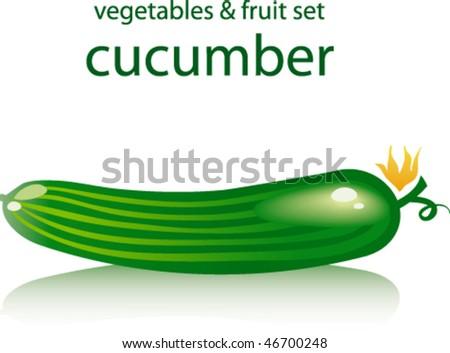 cucumber - stock vector