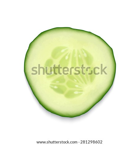 Cucumber slice isolated on white. EPS10 vector