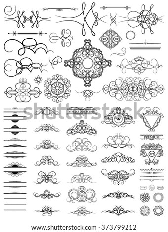 Curved decorative contours in vector. Curve vintage collection for Decoration text, logo, wedding album or restaurant menu. Set decor elements. Ornate swirl leaves and label.  - stock vector