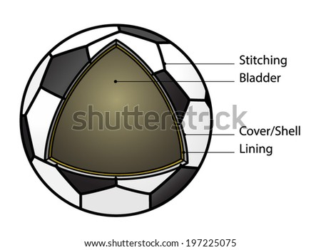 Cutaway diagram showing construction soccer ball stock vector cut away diagram showing the construction of a soccer ball with text labels ccuart Gallery