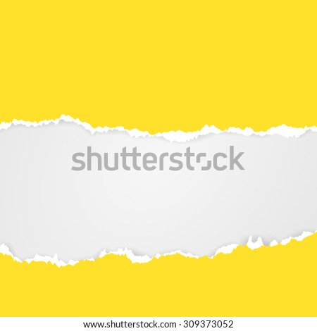 Cut paper. Torn Paper with space for text. Mesh elements - stock vector