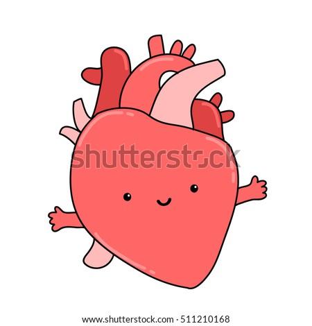 cute anatomical cartoon human heart organ stock vector 511210168 rh shutterstock com human heart cartoon images human body heart cartoon