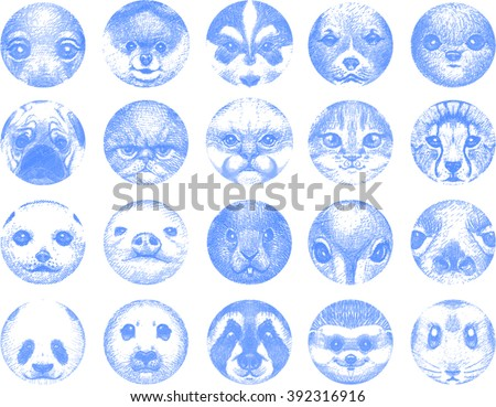 Cute animal faces in circles