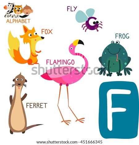 animals that start with the letter f animal zoo alphabet letter f stock vector 451666345 20456