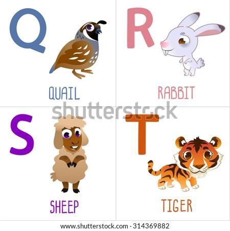 Cute cartoon animals alphabet for kids. Funny letters cartoon: Quail, Rabbit, Sheep, Tiger - stock vector