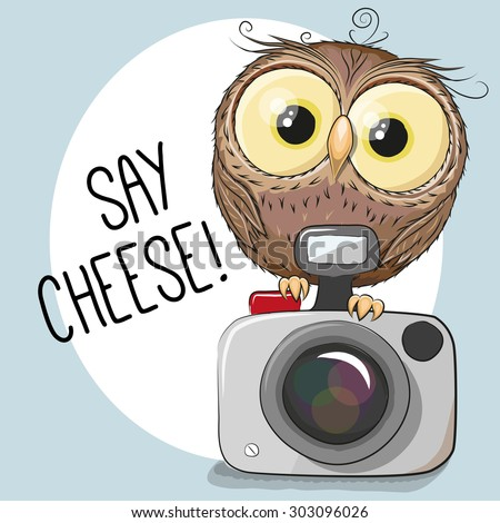 Cute cartoon Owl with a camera on a gray background - stock vector