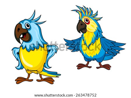 Cute colorful parrots cartoon characters showing birds with yellow and blue feathering and funny crests isolated on white background - stock vector