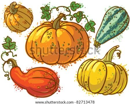 Cute colorful pumpkins set - stock vector