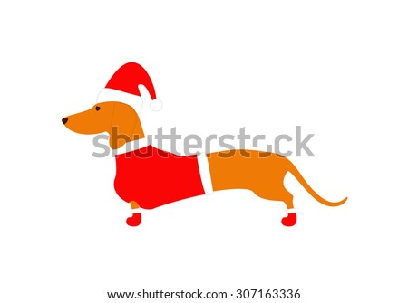 Cute dachshund wearing Christmas suit, red coat, hat and boots isolated on white background - stock vector