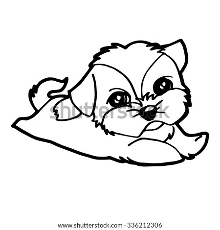 shih tzu puppies coloring pages - sketch dog shih tzu coloring pages