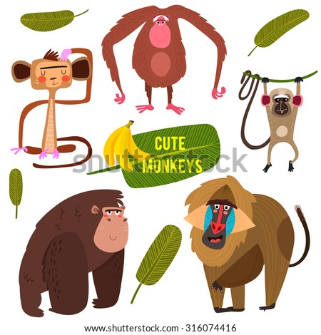 Cute fife funny monkeys colorful collection. (All objects are isolated groups so you can move and separate them)-stock vector - stock vector