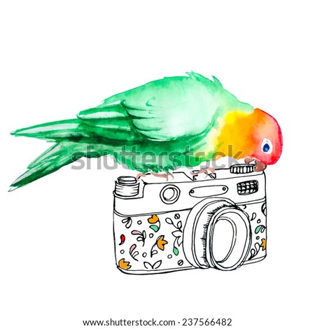 Cute green parrot sits on photo camera, vector - stock vector