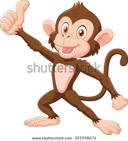 Cute monkey giving thumb up isolated on white background - stock vector