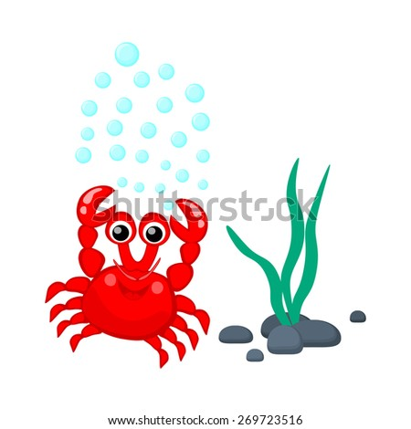 Cute red crab with water bubbles and seaweeds vector illustration Tropical sea life theme illustration Cartoon sea creatures Sea plants and animals vector graphic - stock vector