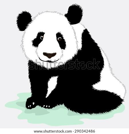 Cute vector panda - stock vector