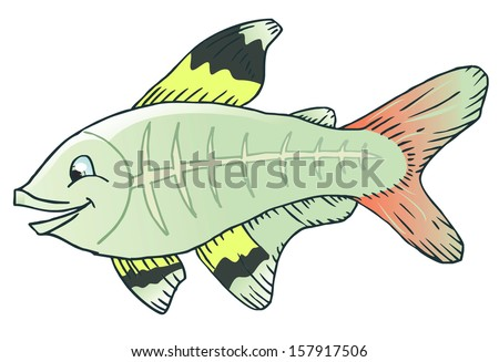 cute x-ray tetra cartoon fish - stock vector