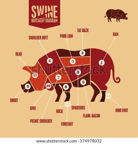 Pork Cuts Stock Images Royalty Free Images Amp Vectors