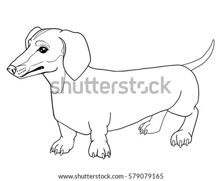 Dachshund Dog Outline Animal For Adult Coloring Book