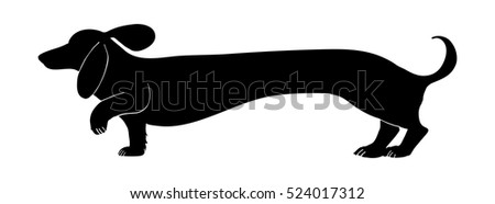 dachshund vector design in black silhouette, cute funny wiener or sausage dog with big floppy ears and wagging tail