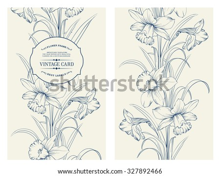 Daffodil flower or narcissus isolated on gray. Floral pattern with narcissus. Vector illustration. - stock vector