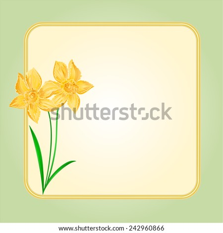 Daffodil Spring flower background frame place for text vector illustration - stock vector