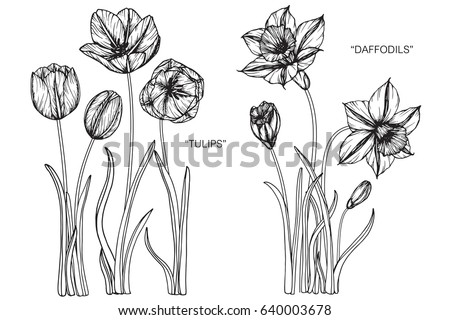 Image result for stylized poppies, daffodils, tulips