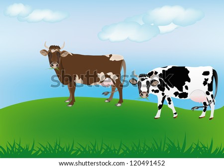Dairy cows over spring green meadow.The rural landscape - stock vector