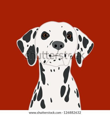 Dalmatian, The buddy dog - stock vector