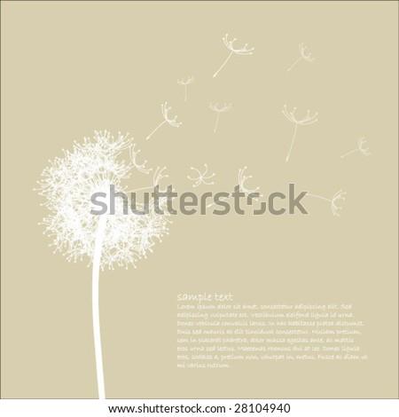 Dandelion - stock vector
