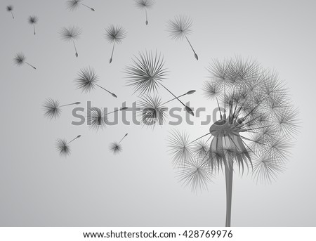dandelion on grey background. Flying spores. Concept of wishing, tenderness and summer time. - stock vector